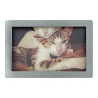 Boucle De Ceinture Rectangulaire Quelqu'un à se pencher sur des chats de Kitty