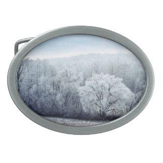 Boucles De Ceinture Ovales Le paysage brumeux d'hiver avec la neige a couvert