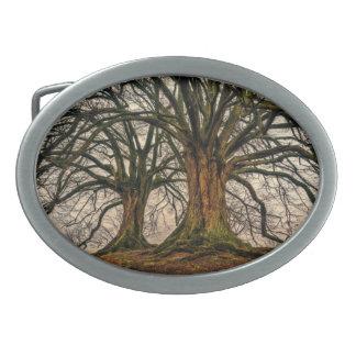 Boucles De Ceinture Ovales Vieux chêne en hiver