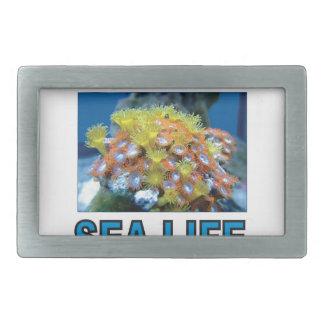 Boucles De Ceinture Rectangulaires art de vie marine