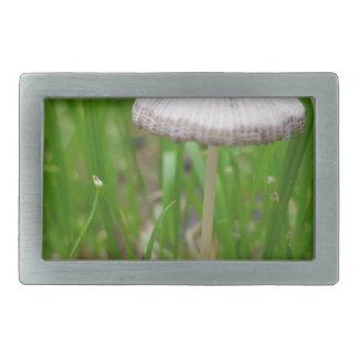 Boucles De Ceinture Rectangulaires champignon de bébé