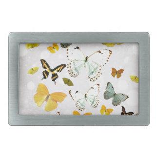 Boucles De Ceinture Rectangulaires Illustration des papillons