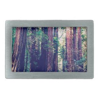 Boucles De Ceinture Rectangulaires Séquoias de Californie
