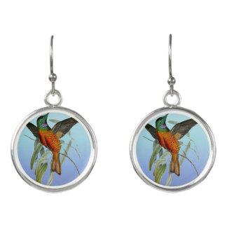 Boucles D'oreilles Bleu de colibri