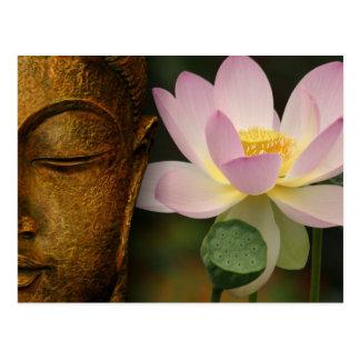 Bouddha et fleur cartes postales
