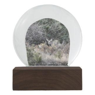 Boule À Neige Globe de neige de cerfs communs de mule