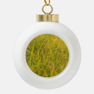 Boule En Céramique Photo de détail d'herbe