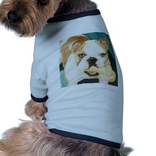 """Bouledogue anglais """"adagio """" manteaux pour animaux domestiques"""
