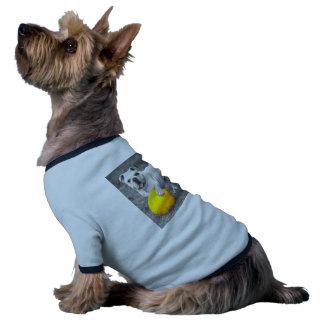 Bouledogue anglais blanc et la boule jaune t-shirt ringer pour chien