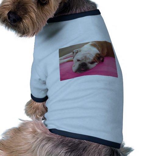 Bouledogue anglais t-shirt pour animal domestique