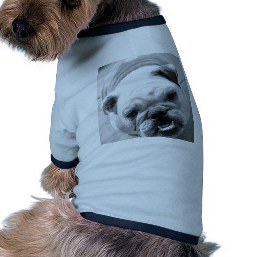 Bouledogue anglais t-shirt pour toutou