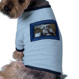 Bouledogue anglais manteaux pour chien