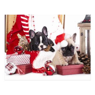 Bouledogue français de Noël de chiot Cartes Postales