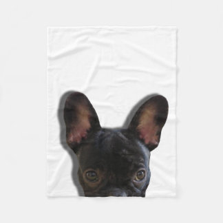 Bouledogue français semi-transparent