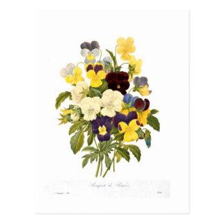 Bouquet des pensées par Pierre-Joseph Redouté Cartes Postales