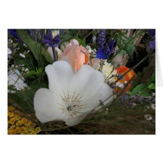 Bouquet, jardin organique d'UCSC Cartes