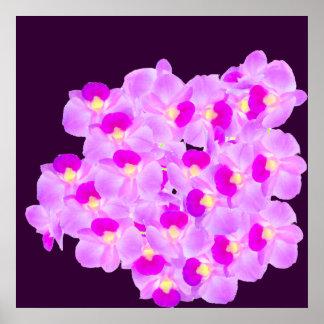 Bouquet rose d'orchidée affiche