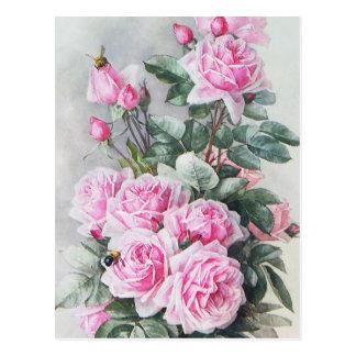 Bouquet rose vintage de roses cartes postales