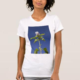 Bourgeon floral rose dans un ciel bleu t-shirt