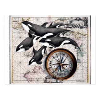 Boussole nautique d'orque cartes postales