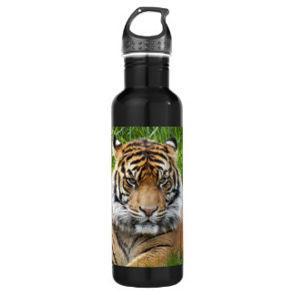 Bouteille d'eau de la photo 24oz de tigre de