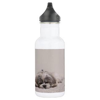 Bouteille d'eau de sommeil de tzu de Shih, chien