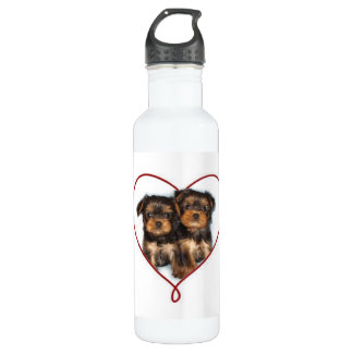 Bouteille d'eau de Valentines de terriers de