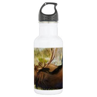 Bouteille D'eau En Acier Inoxydable Le Roi Moose Taureau de Teton