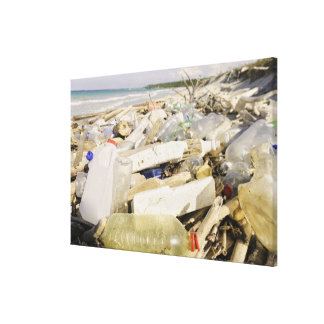 Bouteilles en plastique et océan vidant sur un toiles