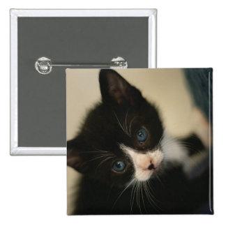 Bouton de chaton de BW Badges