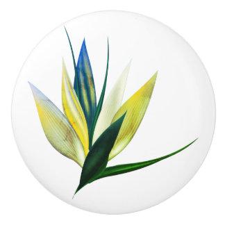 Bouton de design d'intérieur : art floral exotique