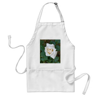 bouton de rose blanc tablier