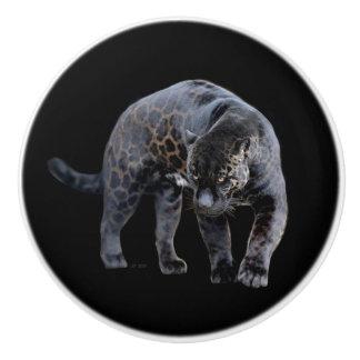 Bouton en céramique de Jaguar Diablo
