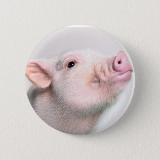 Bouton porcin mignon badge