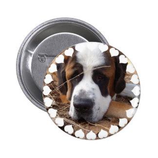 Bouton rond de chien de St Bernard Badge