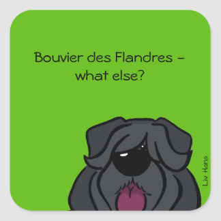Bouvier du Flandres - else what ? Sticker Carré