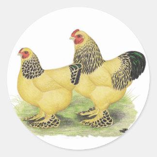 Brahmas :  Coqs nains de couleur chamois Sticker Rond