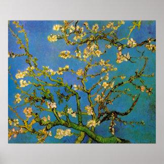 Branche d'amande de Vincent van Gogh, post Poster