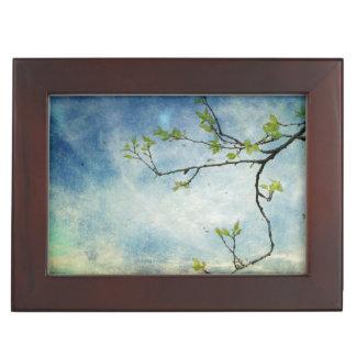 Branche d'arbre au-dessus de ciel texturisé boîte à souvenirs