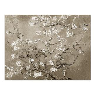Branches d'amande de Van Gogh en fleur - sépia Carte Postale
