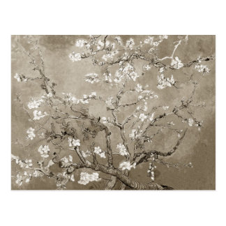 Branches d'amande de Van Gogh en fleur - sépia Cartes Postales