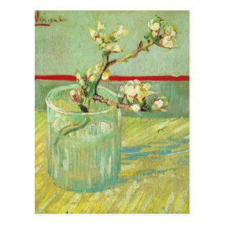 Branches de fleur d'amande en beaux-arts en verre carte postale