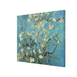 Branches de Vincent van Gogh avec la fleur Toiles