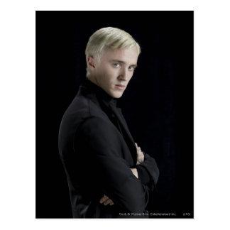 Bras de Malfoy de Draco croisés Carte Postale