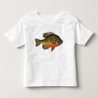 Brème de poisson de soleil t-shirt pour les tous petits