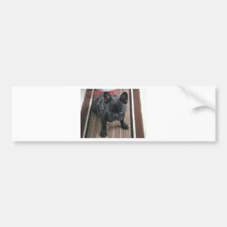 Brindle_French_Bulldog sitting.png Autocollant De Voiture