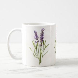 Brins botaniques vintages d'usine d'herbe de mug