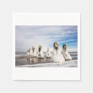Brise-lames sur la côte de mer baltique serviette en papier