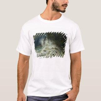 Briseurs outre de point de Granville dans la T-shirt