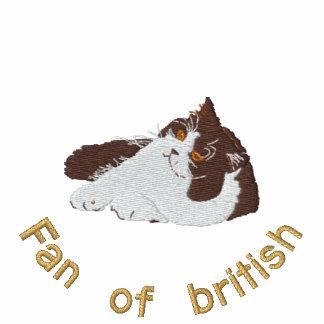 british longhair chocolat et blanc